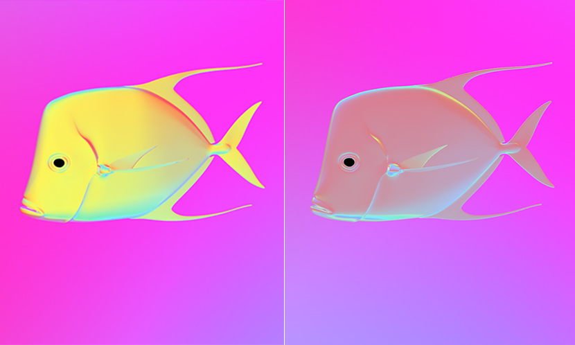 How the lookdown fish would appear in polarized light with mirrored skin (l) versus skin that reflects polarized light (r).