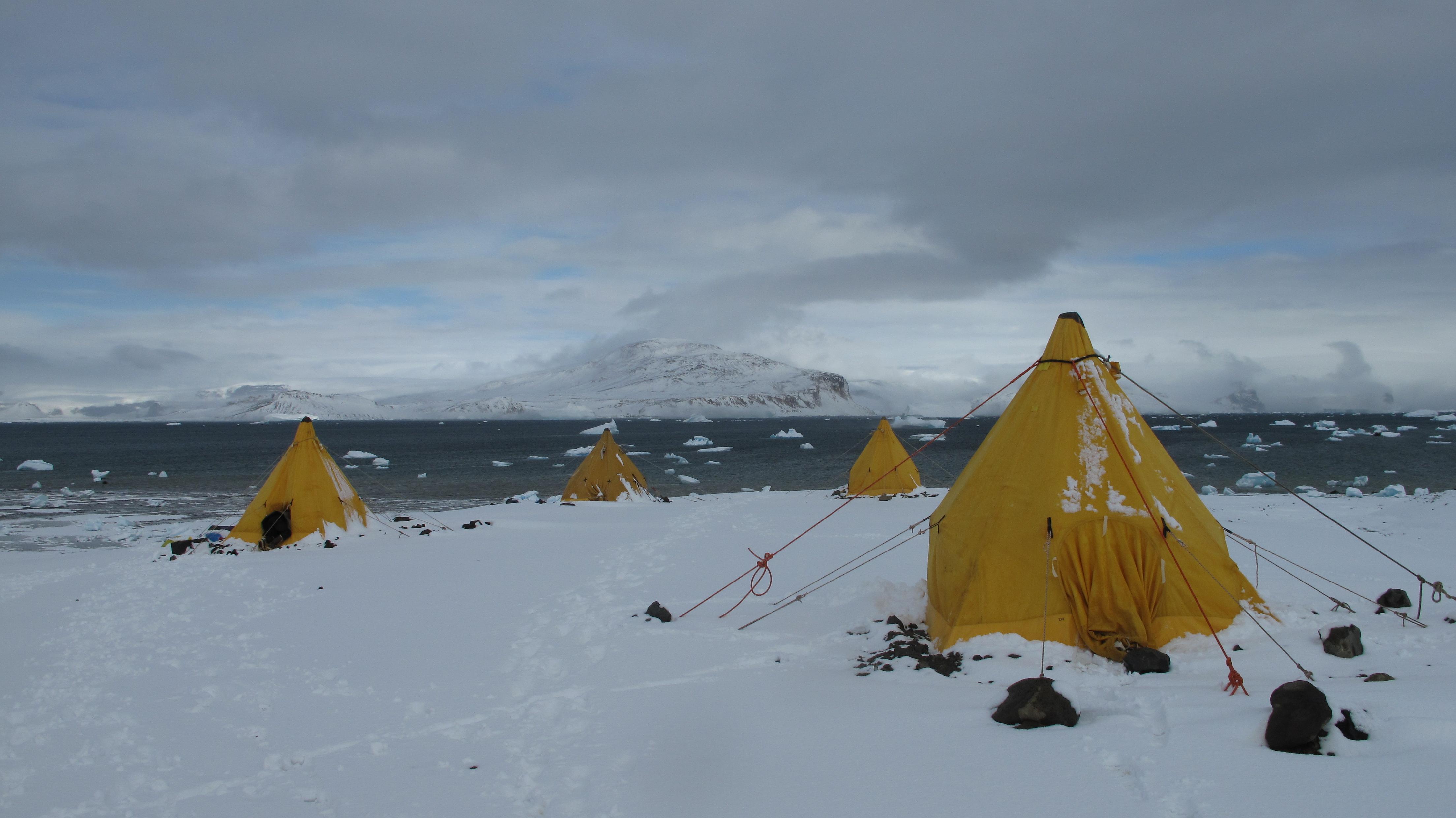 AntarcticDinos4