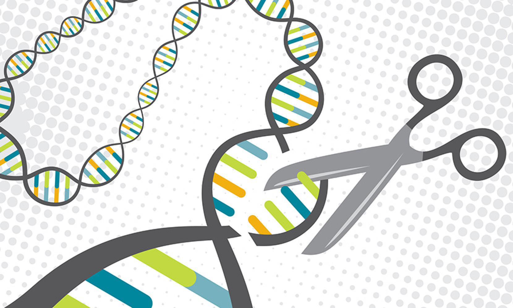 First Human Trial Of Gene Editing Technique Crispr Manual Guide