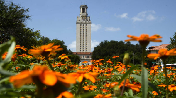 tower and orange flowers