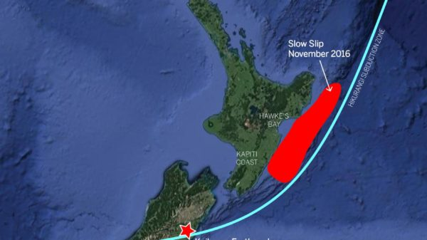 newzealand2-01
