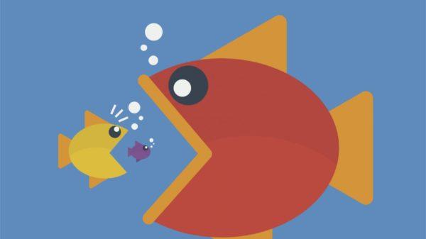 fish_animation
