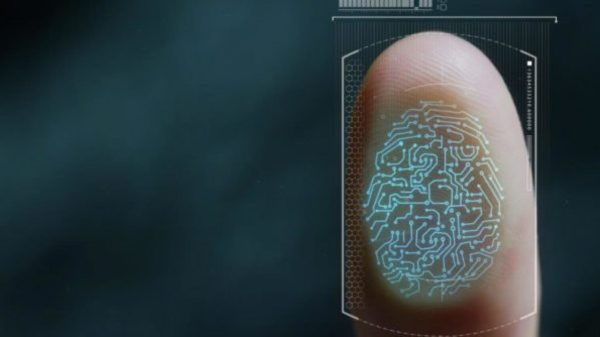 Fingerprint identification graphic.