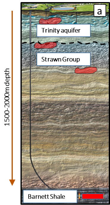 Strawn Group cross section