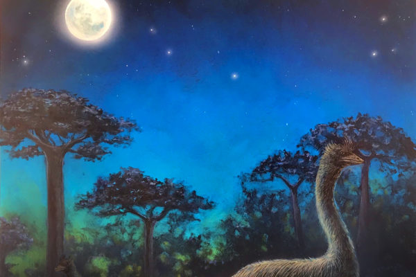 Elephant bird, artist's rendering.