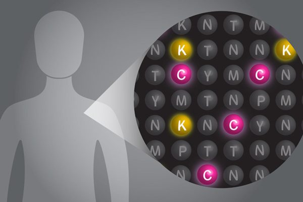Illustration of human protein code sequence