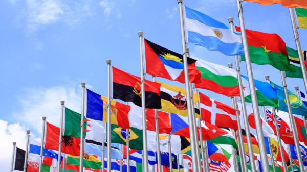 Dozens of flags flying