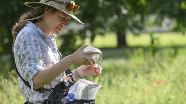 Dr. Susan Cameron Devitt produces a collection vial from her waist pack, harvests the insect.