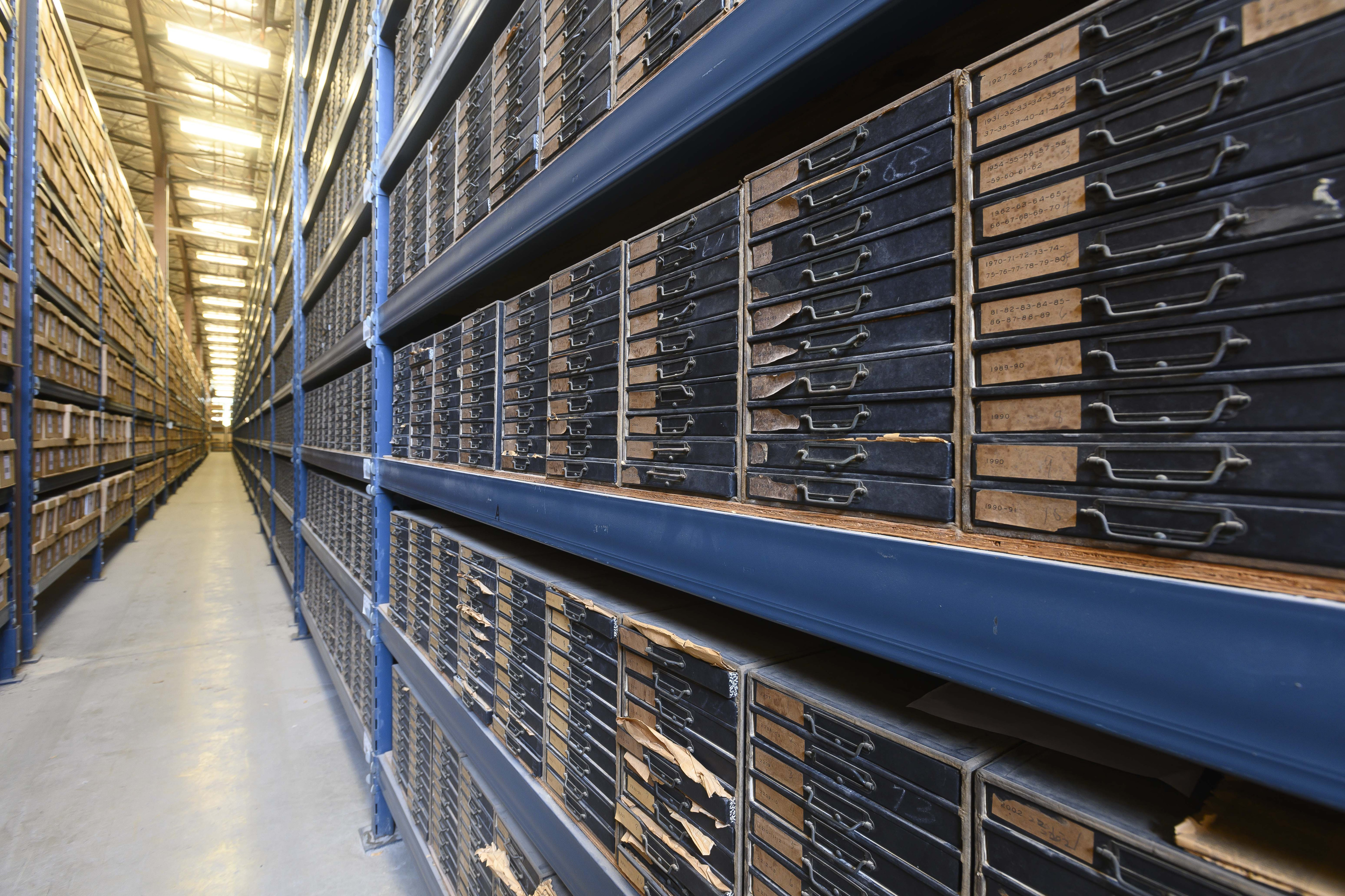 Rows 15 feet high with small drawers containing the cuttings.