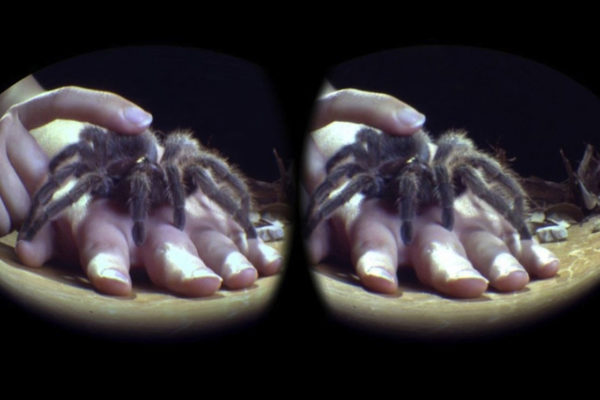 A tarantula crawls up someone's hand as viewed through the lens of a virtual reality device.