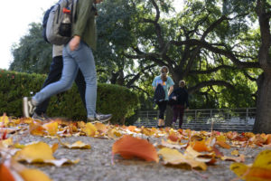 Students walk through burnt orange leaves on the pavement on the Main Mall.