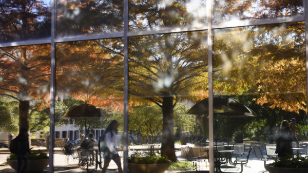 Reflections of the rust-colored cypress trees in the windows of the McCombs School with a student walking.