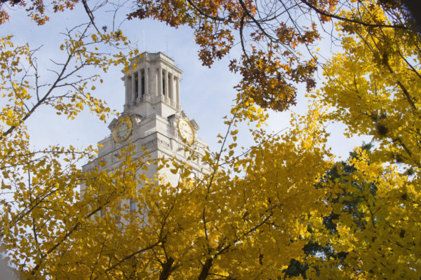 Tower through tree with yellow leaves 2018