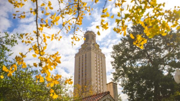 tower, fall, trees, campus, yellow leaves