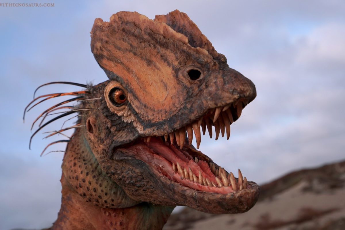 The illustration shows the dinosaur had sharp teeth and large bone ridges around the front of its face