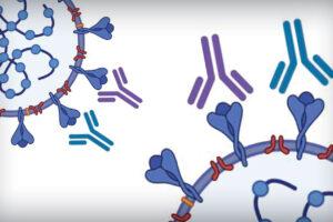 SARS-CoV-2 Antibody Test