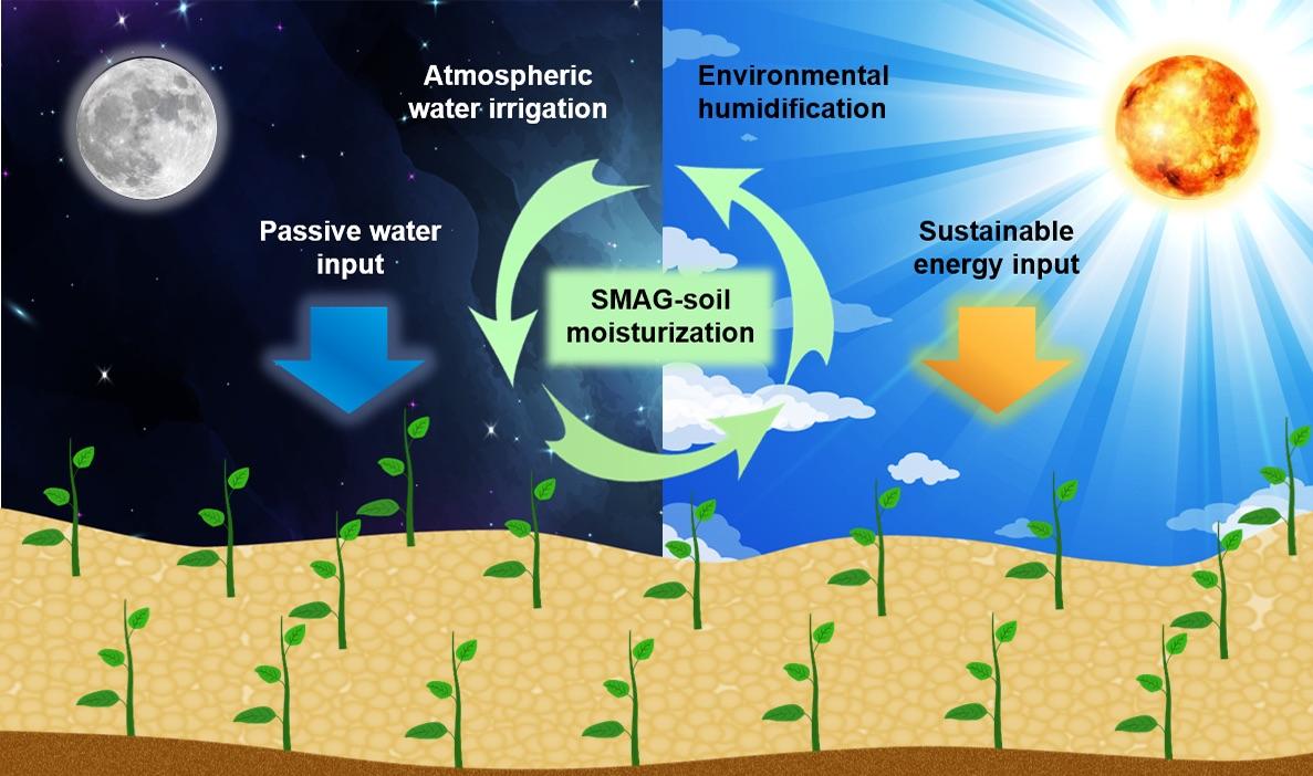 Self-Watering Soil Could Transform Farming