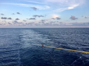 A photograph of the ocean showing a seismic streamer trailing in the ocean.